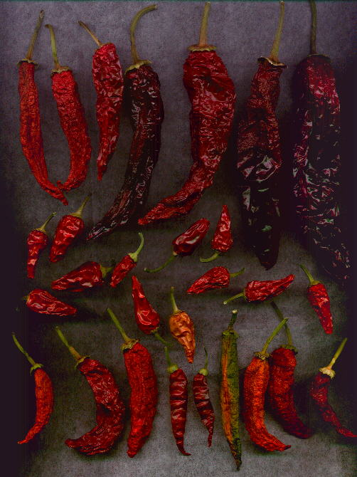 Our dried 1997 peppers (68KB Image)